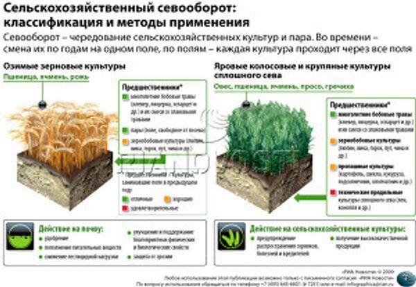 Сельскохозяйственный севооборот:классификация и методы применения