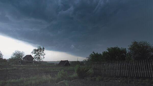 Штормовой ветер повалил деревья в центре Новосибирска
