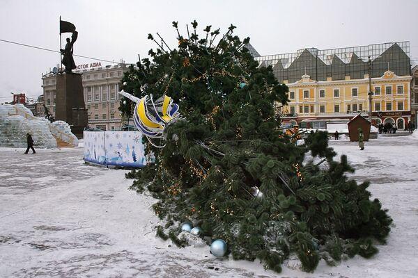 Новогодняя елка, упавшая в результате штормового ветра во Владивостоке