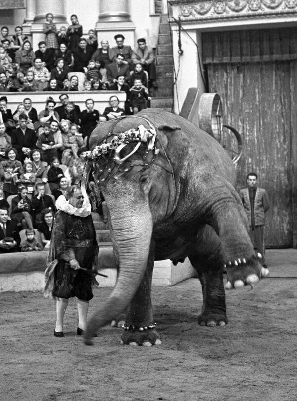 Дуров выступает на арене цирка
