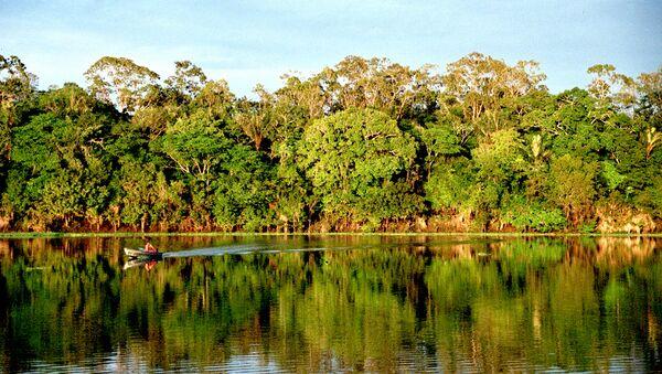 Амазония. Архивное фото