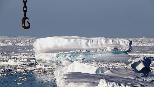 Антарктика. Архивное фото