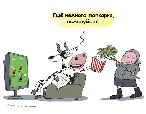 Веселые коровы и поп-корн