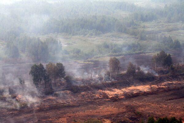 Тушение торфяных пожаров в Подмосковье