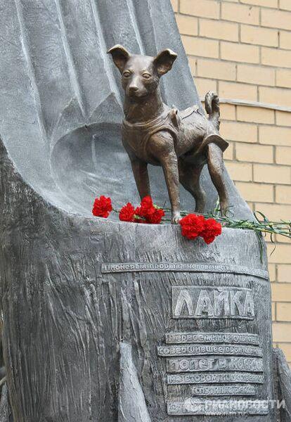 Открытие памятника собаке Лайке в Москве
