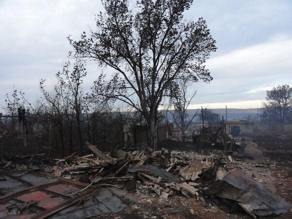 Последствия лесных пожаров. Архив