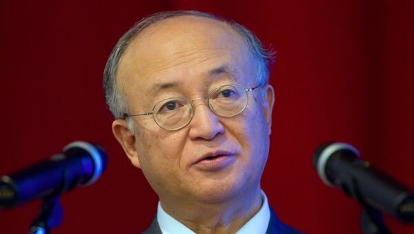 Генеральный директор МАГАТЭ Юкио Амано. Архивное фото