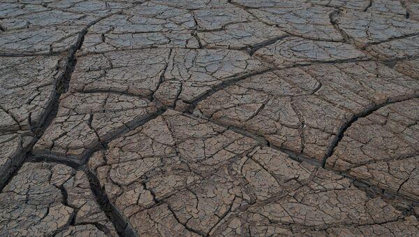 Засуха. Архивное фото