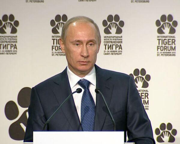 Путин назвал вымирание тигров трагедией и сигналом бедствия от природы