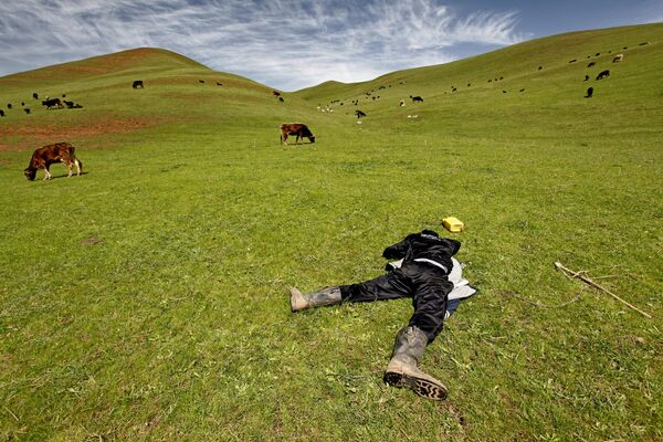 Пастух спит на пастбище в окрестностях Джалал-Абада.