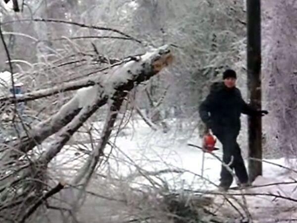 Коммунальщики распиливают упавшее дерево