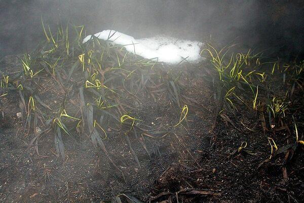 Торфяники продолжают тлеть на юго-востоке Подмосковья