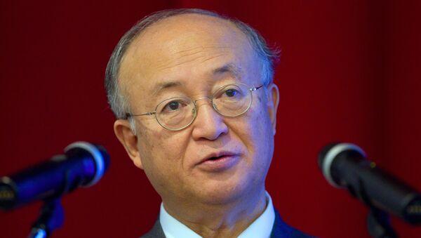Генеральный директор МАГАТЭ Юкия Амано. Архивное фото