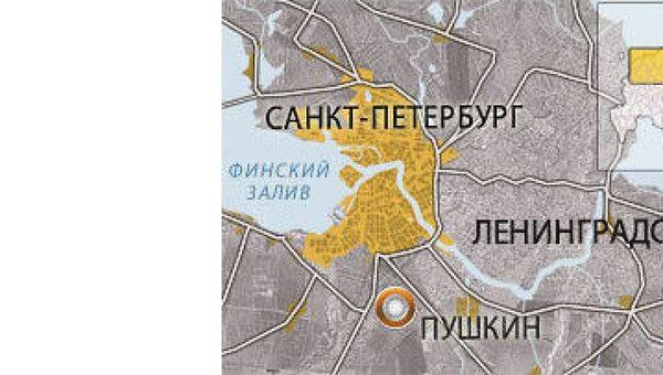 Потолок обрушился в спортзале школы города Пушкин под Петербургом