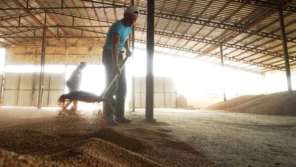 Сбор урожая сельскохозяйственного предприятия