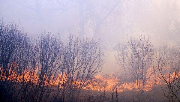 Лесные пожары в канадской провинции Британская Колумбия бушуют уже почти две недели