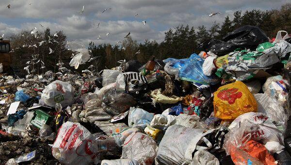 Полигон для утилизации бытовых отходов. Архив