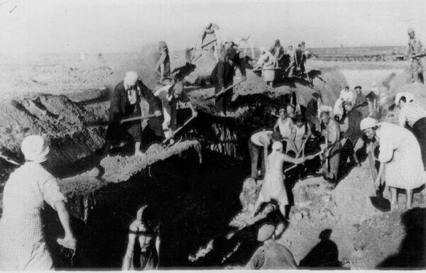 Жители Сталинграда роют окопы. 1942 год