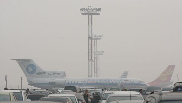 В аэропорту Домодедово, архивное фото