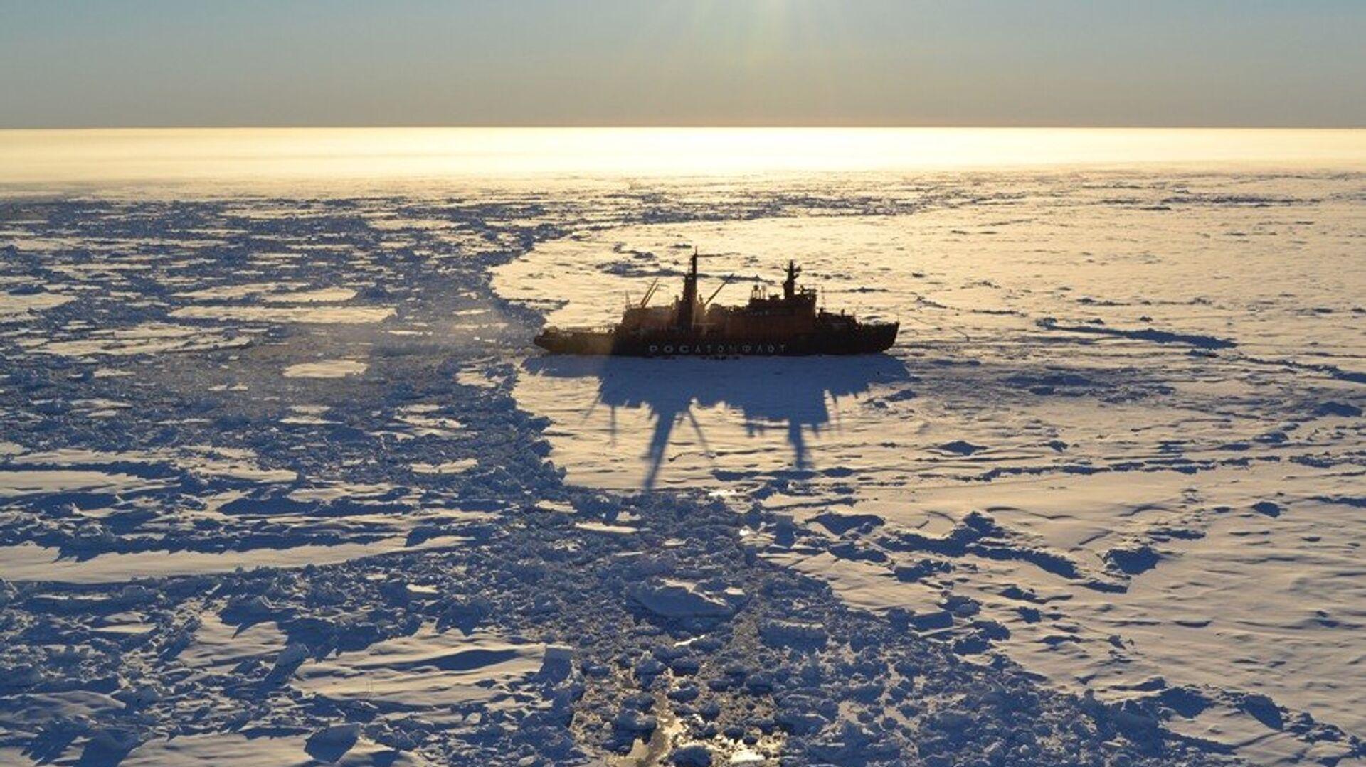 Экспедиция Арктика-2012 - РИА Новости, 1920, 15.09.2020
