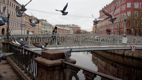 Голубы взлетают над каналом Грибоедова в Петербурге