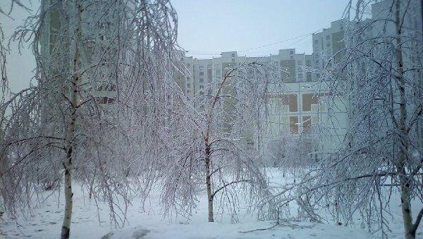 Зимний день в Москве