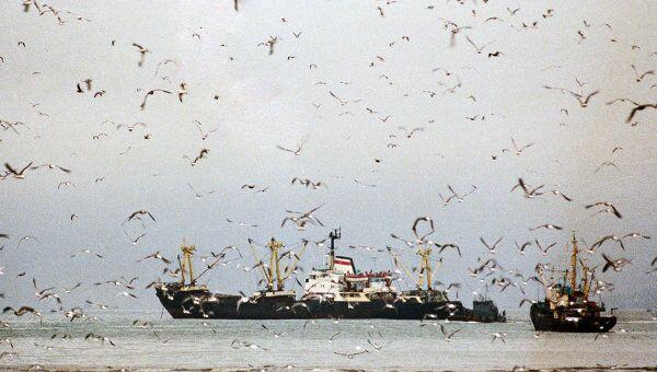 Рыболовецкие судна в море