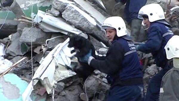 Чудом выживших женщину и собаку извлекли из-под завалов в Астрахани