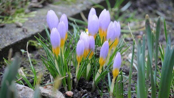 Первый день весны в Лейпциге