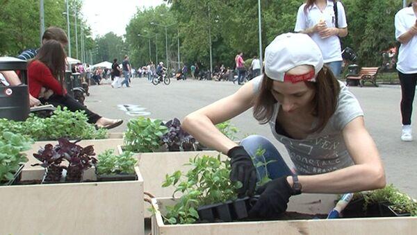 Передвижные клумбы и поделки из мусора: Зеленая неделя в парке Горького