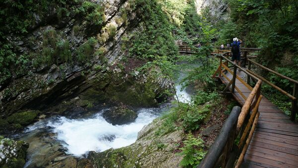 Каньон Винтгар в Словении. Архивное фото