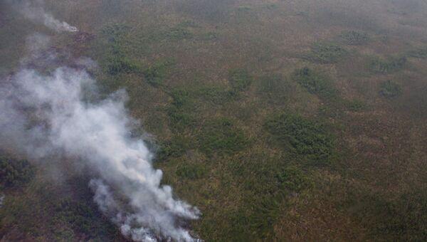 Лесные пожары в Томской области. Архивное фото