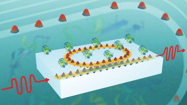 Принципиальная схема нового биосенсора. На поверхности находится только чувствительное кольцо, а вся его оптическая часть —  источник и детектор излучения — располагается внутри диэлектрика