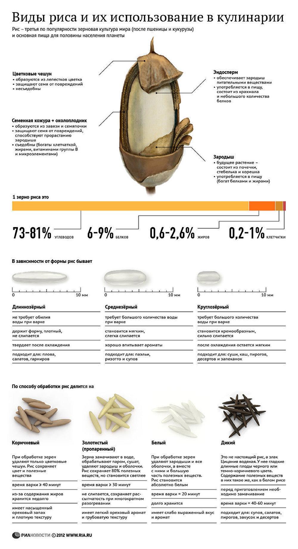 Виды риса и их использование в кулинарии