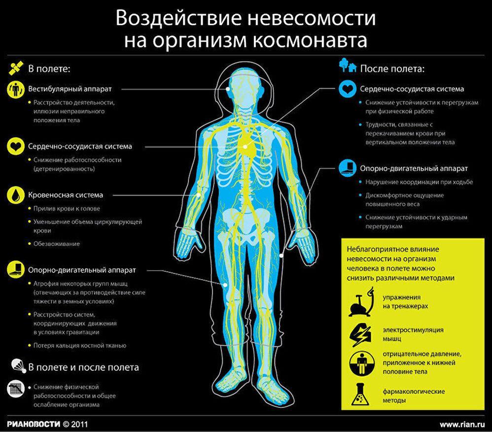 Воздействие невесомости на организм космонавта