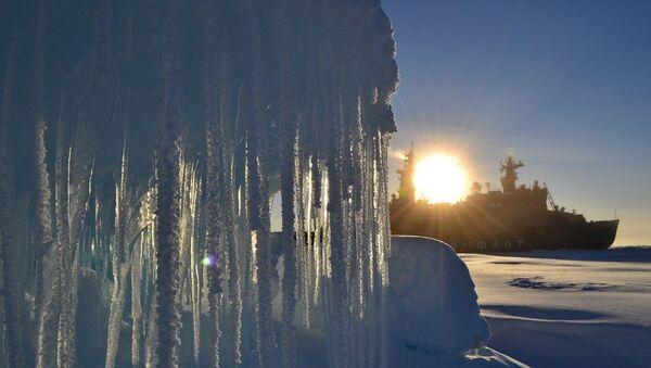 Экспедиция Арктика-2012 на атомном ледоколе Россия. Архивное фото