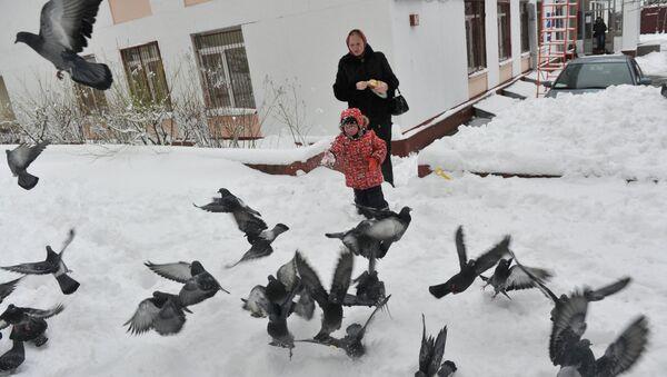 Женщина с ребенком кормят голубей на одной из улиц города. Архив