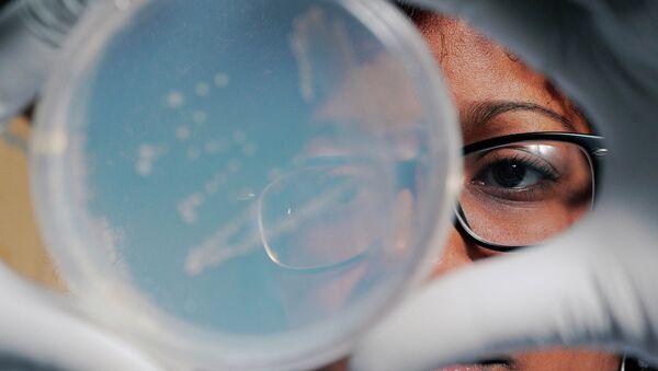 Чашка Петри с колониями бактерий, собранных в тропосфере