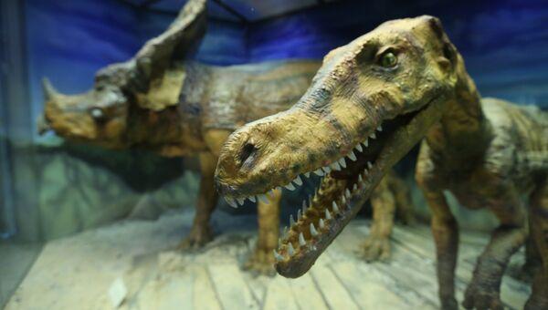 Движущиеся модели динозавров, мимо которых просто невозможно пройти, не остановившись