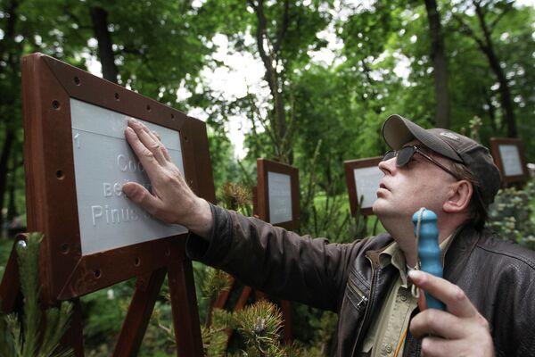 Посетитель у композиции Ботанический сад для невидящих на фестивале ландшафтного дизайна Императорские сады России