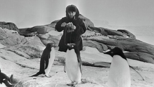 Песков в Антарктиде