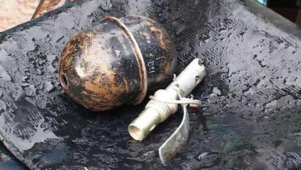 Полицейские обезвредили боевую гранату в одном из сел Горного Алтая