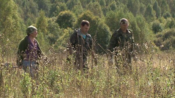 Я убит подо Ржевом: почему поисковый отряд не может захоронить воинов ВОВ
