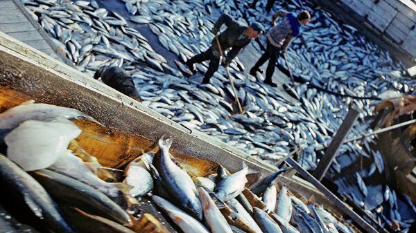Ловля рыбы, архивное фото