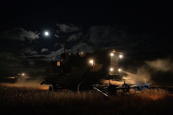 Уборка урожая пшеницы ночью недалеко от села Мышланка Новосибирской области