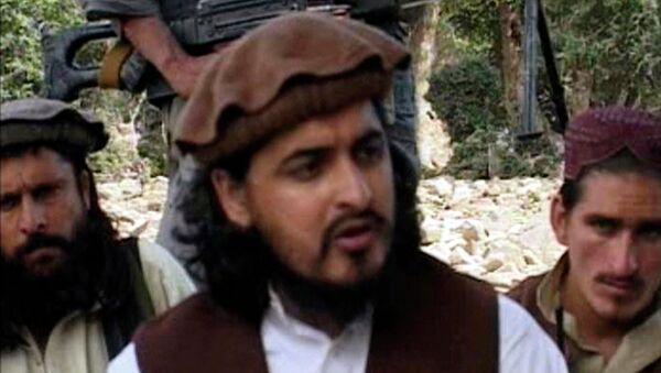 Лидер движения Техрик-и-Талибан Пакистан (ТТП) Хакимулла Мехсуд