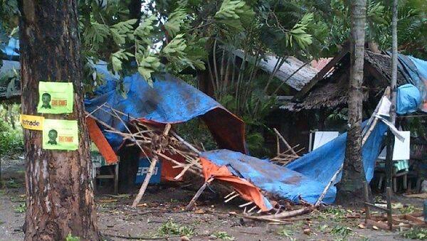 Вырванные деревья и разрушенные дома: последствия тайфуна Йоланда