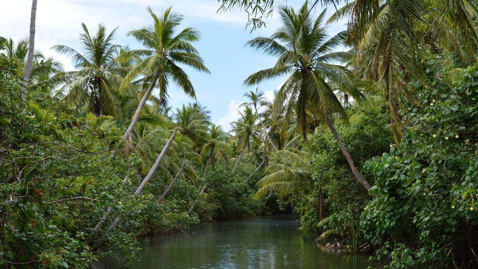 Остров Гуам: река Талофофо, которая рассекает джунгли на острове пополам - РИА Новости, 1920, 09.03.2021