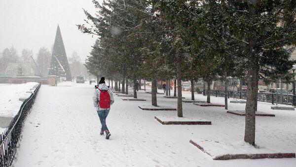 Томичка идет по Новособорной площади во время снегопада в Томске, архивное фото