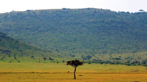 В Кении американские туристы погибли при крушении вертолета